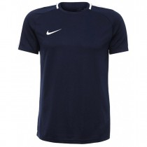 Camiseta Nike MC Dry Top